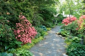 sideyard garden path