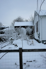 the sideyard with shed. It always looks extra cool in the snow.