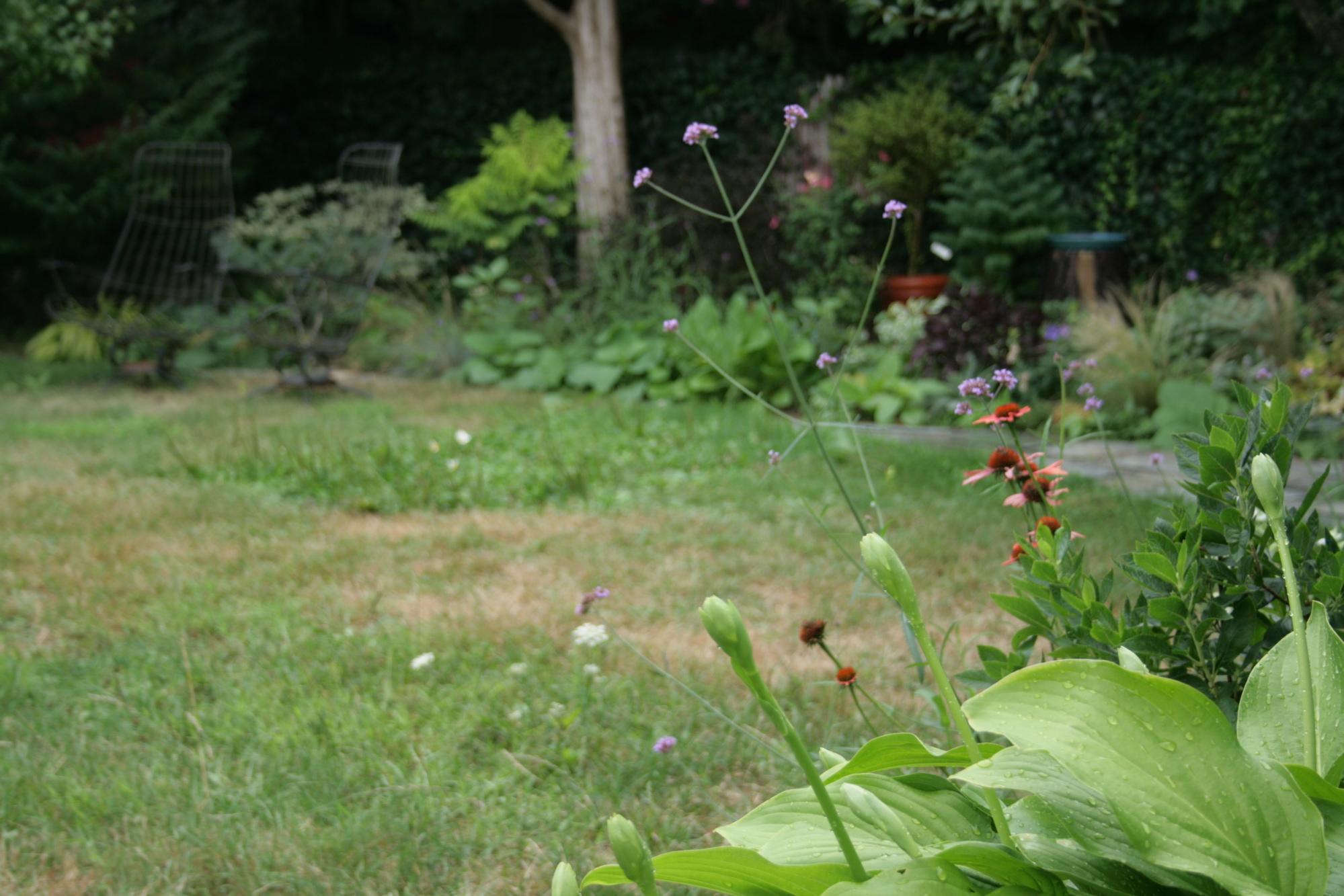 Fine Gardening Garden Photo Of The Day Kristin Green Trench Manicure