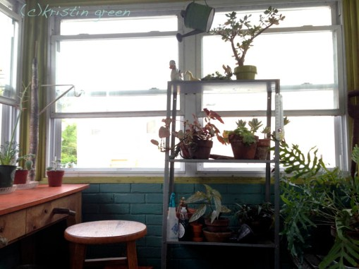 Plantry / summer studio