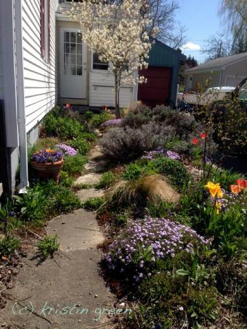 Spring's at the plantry door