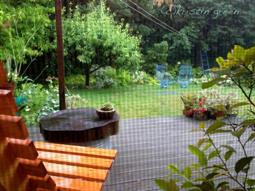 raining on the back yard garden